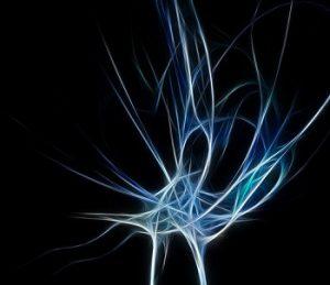 Brain Signal - Geralt